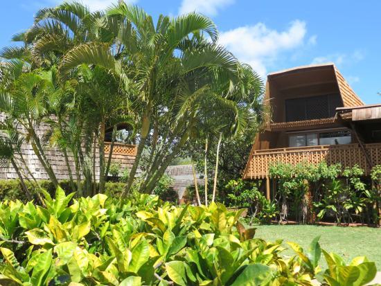 Kaunakakai, Hawái: View of Hotel Molokai garden