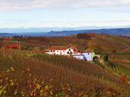 Cascina delle Rose : Views which my camera couldn't capture well from our windows