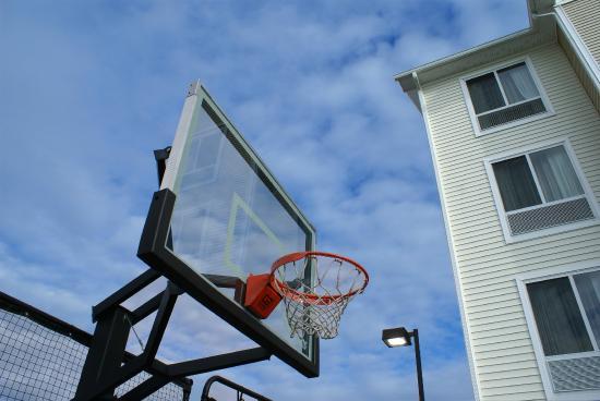 Homewood Suites by Hilton Allentown-West/Fogelsville: Sport Court