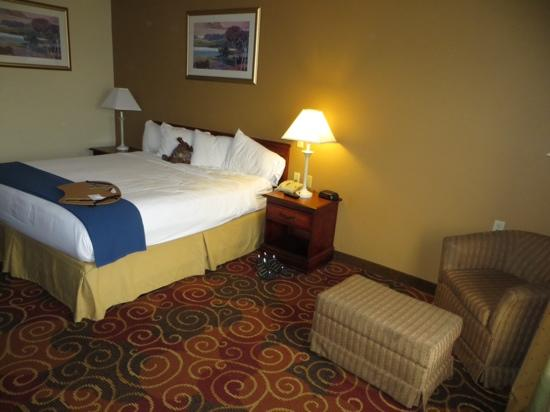Surprising Room 221 Picture Of Country Inn Suites By Radisson Download Free Architecture Designs Scobabritishbridgeorg