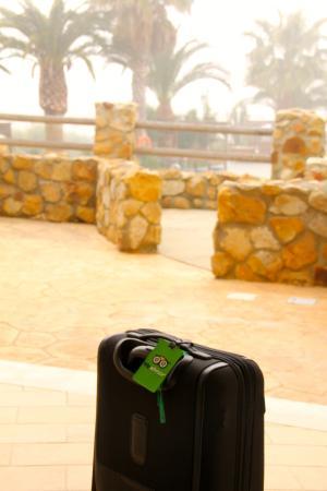 El Cortijo de Zahara: Terraza con salida a la piscina