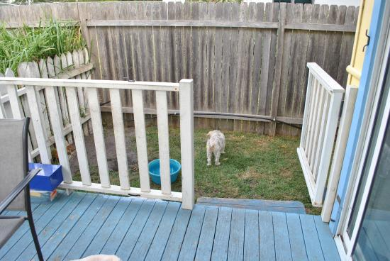 Calm Waters Holiday Cottages: Little dog yard complete with kennel and water bowl.