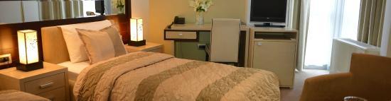 Hotel Vojvodina : Soba u našem hotelu / Room in our hotel