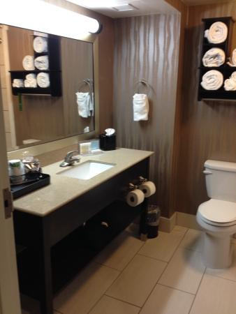 Hampton Inn Milledgeville: Bathroom