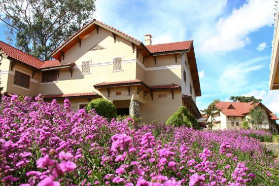 Monet Garden Villa: garden