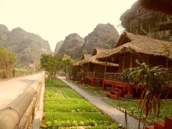 Trang An Farm Stay