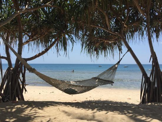 The Hammock on the Beach at the Trisara - Picture of Trisara, Phuket -  Tripadvisor