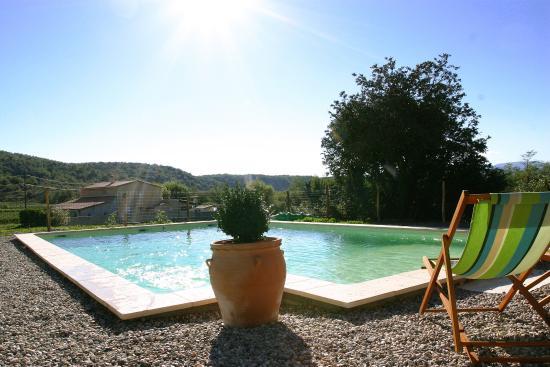Domaine de peyre brune b b reviews price comparison for Algues brunes piscine