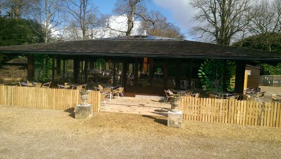 Bowood Treehouse Cafe