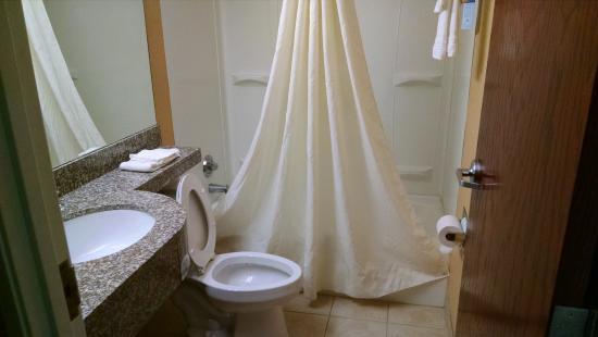 Microtel Inn & Suites by Wyndham Rogers : bathroom