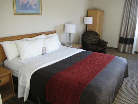 Comfort Inn Moreno Valley near March Air Reserve Base: grand lit, le tout bien présenté