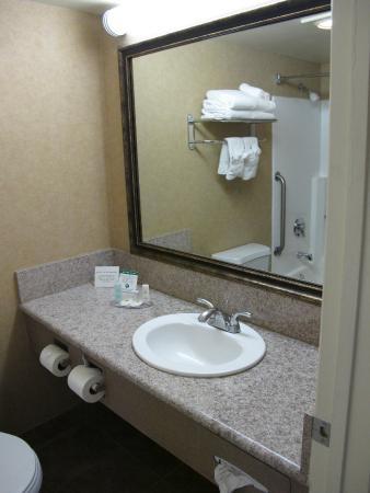 Comfort Inn Moreno Valley near March Air Reserve Base: salle de bain standard