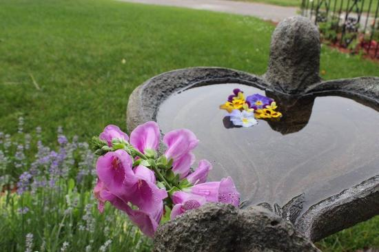 Brickhouse of Somerset Bed and Breakfast : Birds love bathing