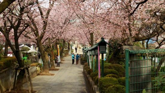 Mitsuzoin Temple