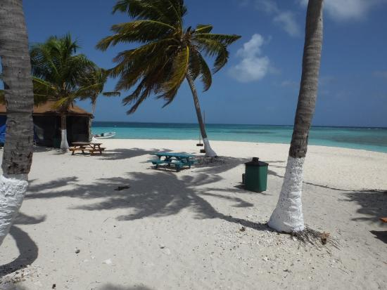 Goff's Caye 사진