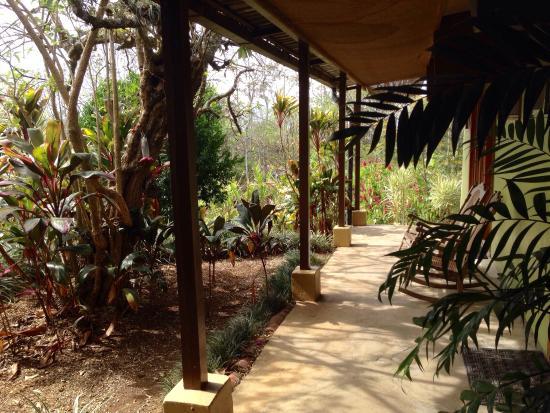 Villa Pacande Bed & Breakfast : Jardin delantero