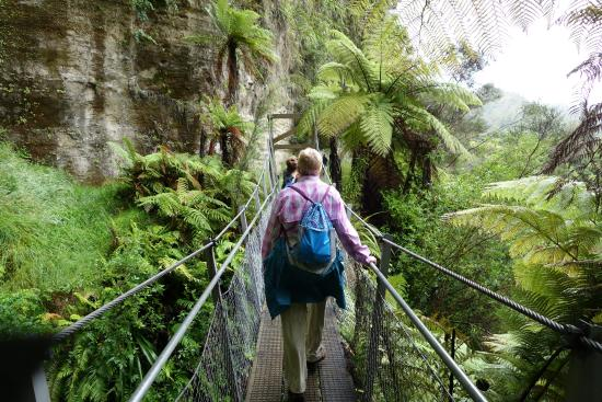 Pipiriki, New Zealand: The track to the bridge has some interesting scenery, including this footbridge