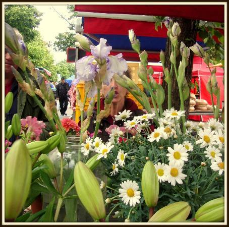 Farmer's Market Jirak