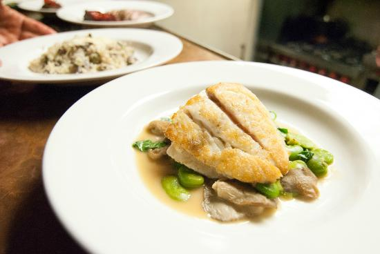 Lana Restaurant and Bar: Local Fish with Fava Beans, Mushrooms, and Spring Onion Jus