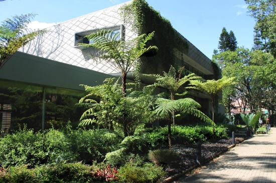 Foto de jardin botanico de medellin medell n en el for Bodas en el jardin botanico de medellin