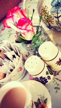 The Hideaway Cafe: Cuteness