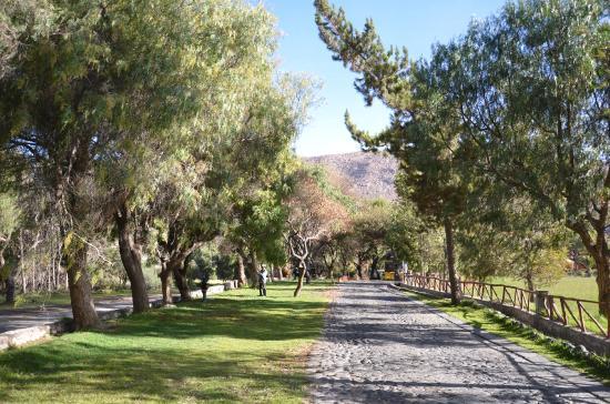 Foto de la mansion del fundador arequipa la mansion del for Fotos jardines exteriores