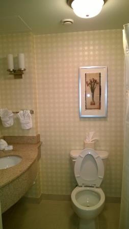 Hilton Garden Inn Raleigh Triangle Town Center: Bathroom