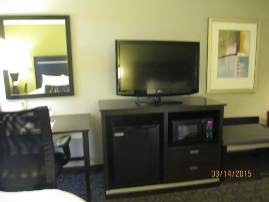 Hampton Inn Atlanta Town Center / Kennesaw : Flat screen TV