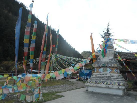 Jiuzailing Temple : templo