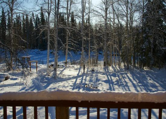 Riverbend Log Cabins & Cottage Rentals : View from our Balcony