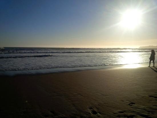 Redwoods Haus Bed and Breakfast : Beautiful beach just two minute walk away