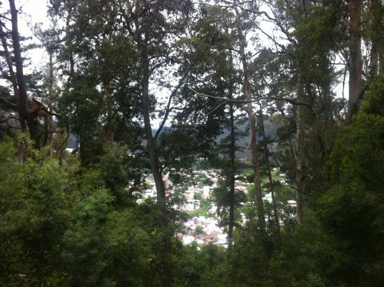 Cerro Caracol : La vista a la población Agüita de la Perdiz