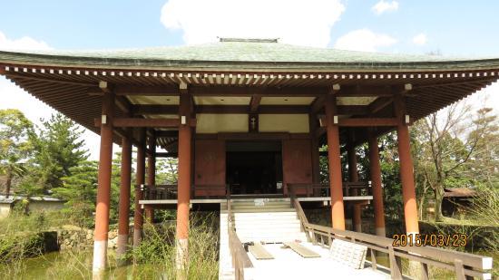 Chuguji Temple : 中宮寺本堂 正面外観景観
