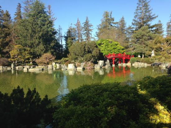 Abandoned wrong parking lot picture of japanese for Japanese friendship garden san jose koi fish