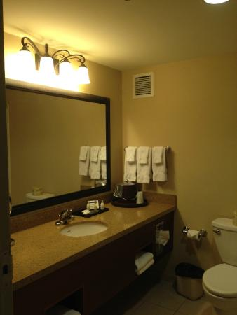 Treasure Island Resort & Casino: room bathroom
