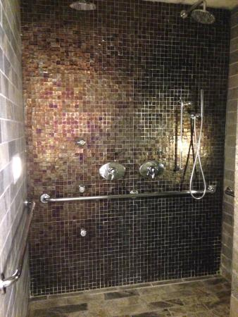 dana hotel and spa: The best shower ever.