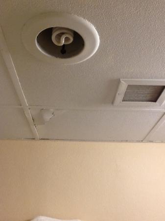 Budget Inn: bathroom ceiling