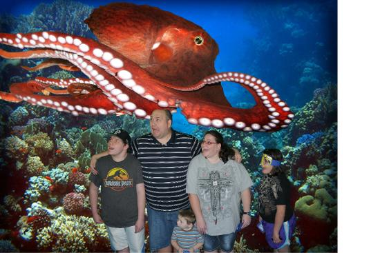 Photo opp when you first come in sea life charlotte Concord mills mall aquarium