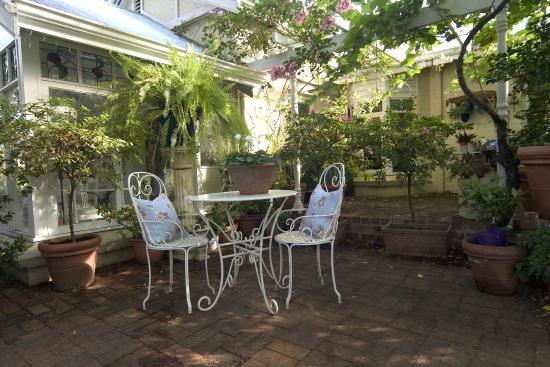Durack House Bed & Breakfast : Back Garden