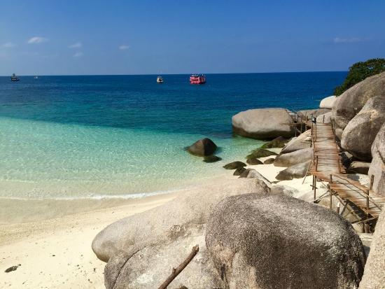 Nangyuan island bild von nangyuan island dive resort ko phangan tripadvisor - Nangyuan island dive resort tripadvisor ...