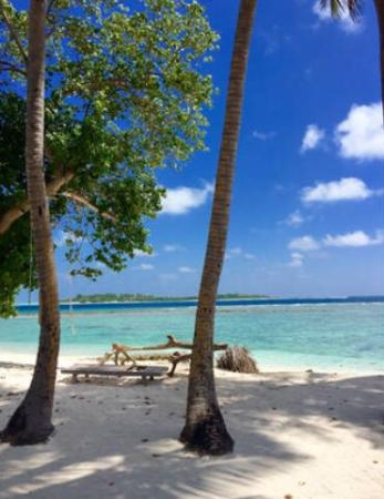 Madi Guest House Maldives Thulusdhoo