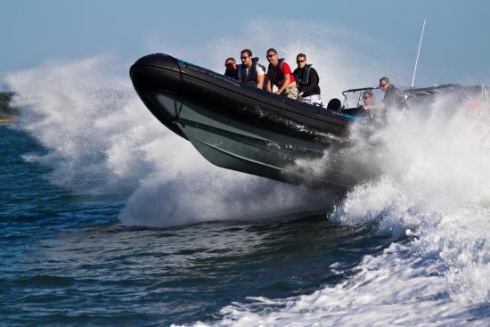Seadogz Rib Charter Limited