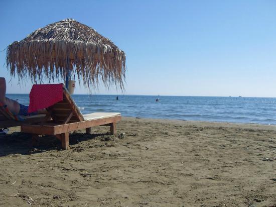 Cactus Hotel : пляж