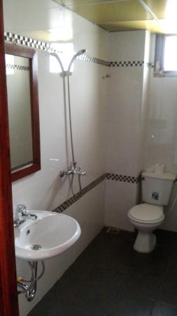 Royal Sapa Hotel: Baño