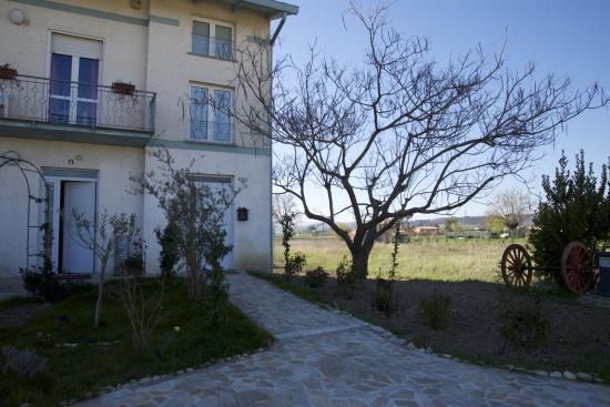 Villa Ceccarini Fonte D'Oro : Esterno
