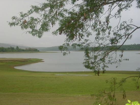 River Tern Homestay