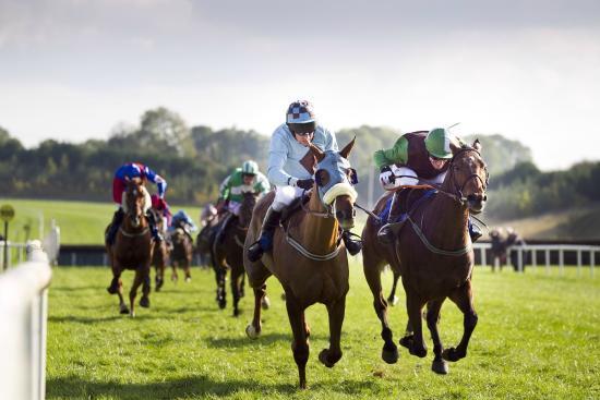 Limerick Racecourse