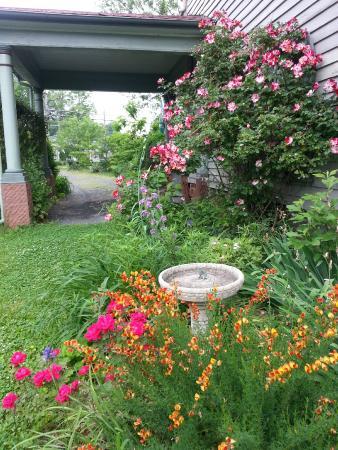 Manassas Junction Bed and Breakfast: Spring flowers