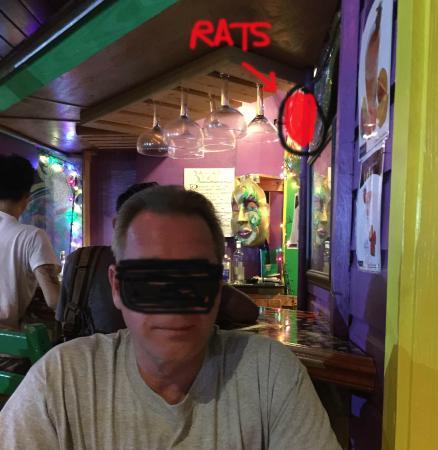 Bateman's Big Easy: RATS!!!!