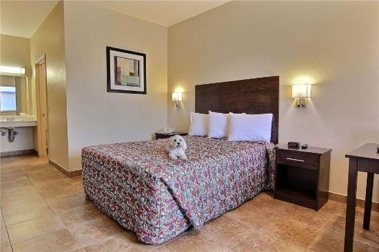 Alister Square Inn: single queen bed handicap room